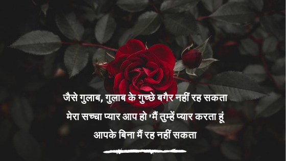 Rose Day Wishes 2019 Sms Shayari Messages Images Greetings