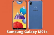 Samsung Galaxy M01s Price, Specification, Pros and Cons