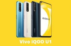 Vivo iQOO U1 Pros and Cons, Price, Specification